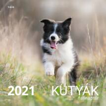 KUTYÁK NAPTÁR 2021