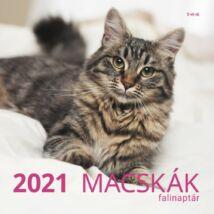 MACSKÁK NAPTÁR 2021