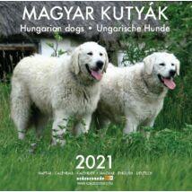 MAGYAR KUTYÁK NAPTÁR 2021 (20X20CM)