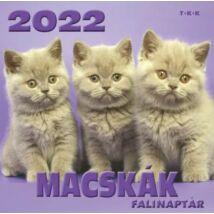 MACSKÁK FALINAPTÁR 2022
