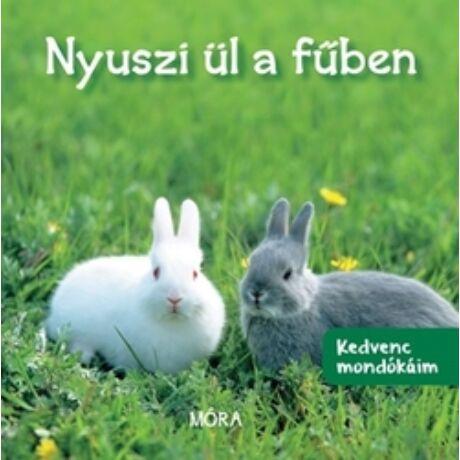KEDVENC MONDÓKÁIM - NYUSZI ÜL A FŰBEN
