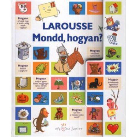 LAROUSSE - MONDD,HOGYAN?